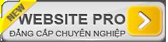 thiet-ke-website-tai-da-nang-web-pro