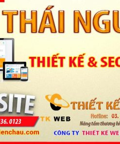 thiet-ke-website-tai-thai-nguyen