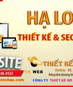 thiet-ke-web-tai-ha-long